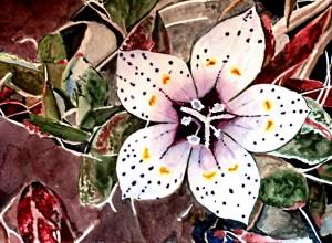 Lilac Sun Bonnett