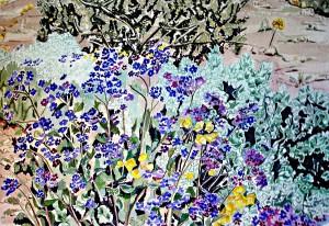 Phacelia and Desert Holly